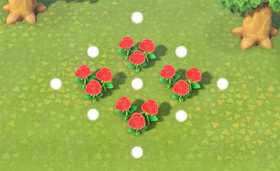 交配させやすい花の配置
